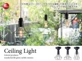 ワイヤーフレーム・シーリングライト(1灯)LED電球&ECO球対応
