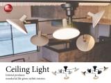 スタイリッシュデザイン・シーリングライト(5灯)LED電球&ECO球対応